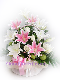 2152   Basket of Lilies