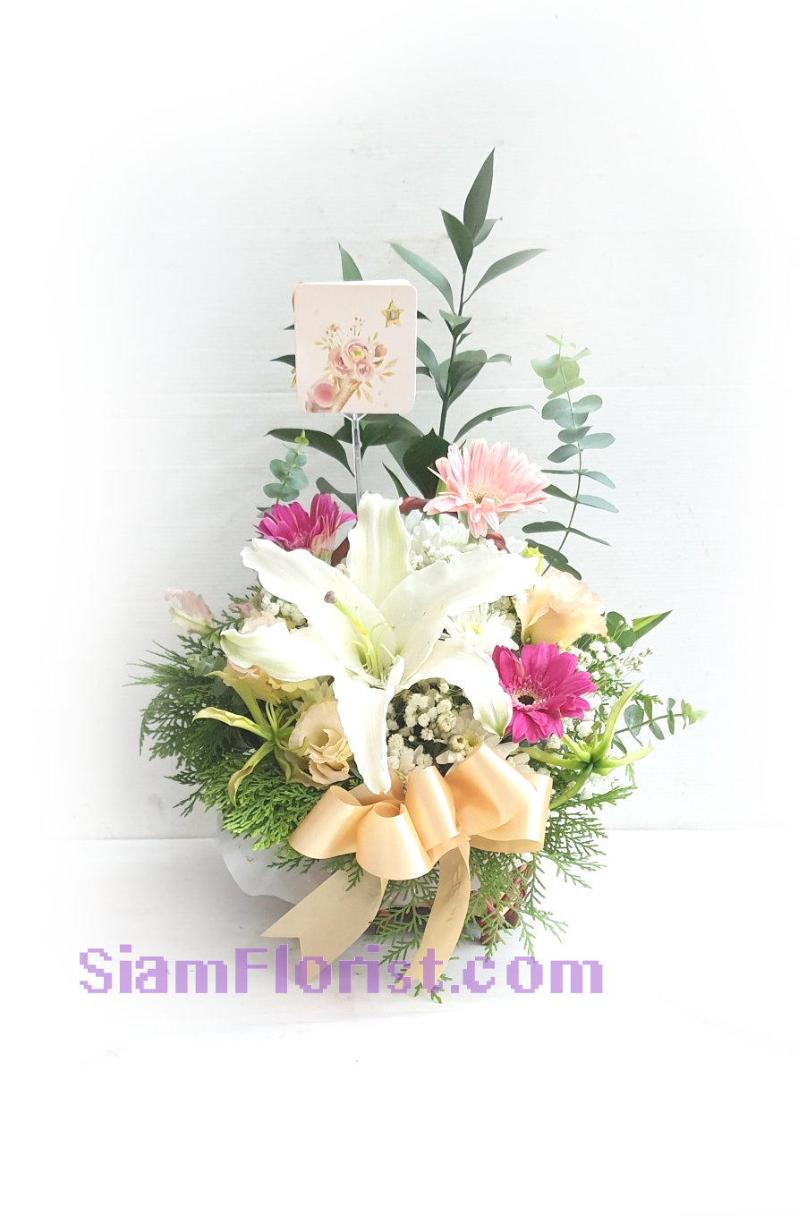 01850 Basket of Mixed Flowers