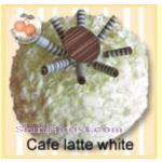 4069  Cafe Latte White Cake