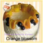 4084  Orange Blossom Cake